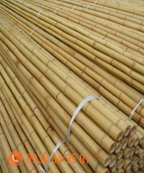 Cung cấp nguyên liệu tre trúc xuất khẩu giá tốt