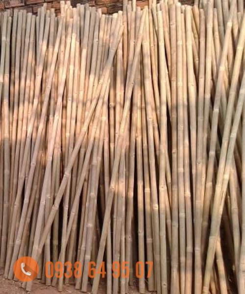 Nguyên liệu tre trúc xuất khẩu