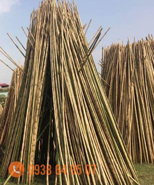 Cung cấp nguyên liệu tre trúc xuất khẩu tại Hà Nội