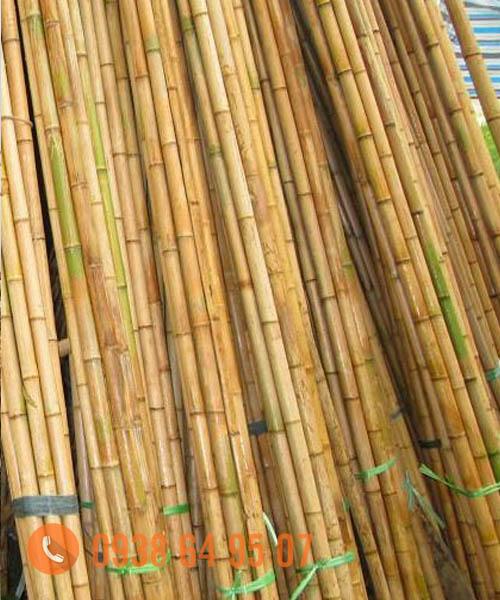 Cung cấp nguyên liệu tre trúc xuất khẩu tai TPHCM