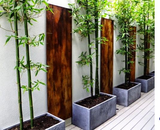 Kiến trúc tre xanh trong thiết kế sân vườn 3