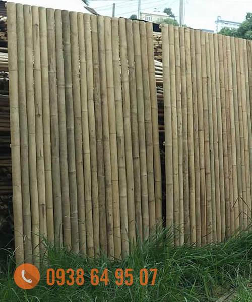 Cây tre làm hàng rào, ốp trần