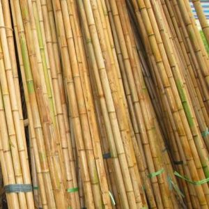 Nguyên liệu tre xuất khẩu 4-5m
