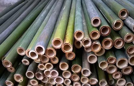 nguyên vật liệu bằng cây tre có trọng lượng nhẹ